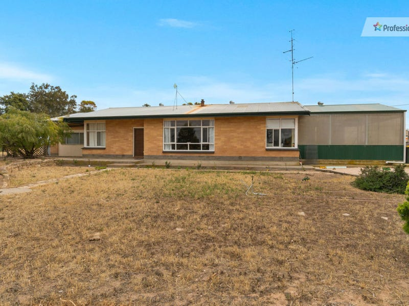 334 Minlacowie Road, Brentwood, SA 5575