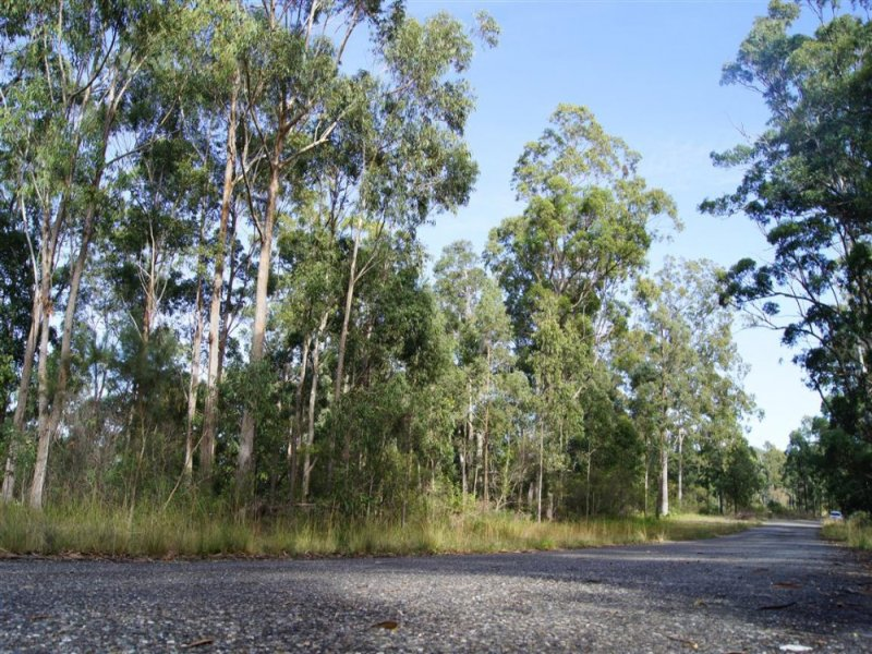 319 Dirty Creek Road, Dirty Creek, NSW 2456