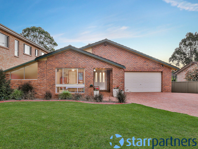 20 Appaloosa Cir, Blairmount, NSW 2559