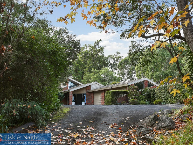 169 Black Range Road, Black Range, NSW 2550