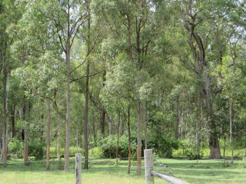 2475B Old Tenterfield Road, Rappville, NSW 2469