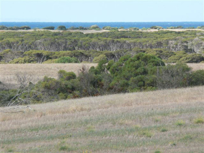 Lot 3 Southcoast Road Sturt Bay Via, Warooka, SA 5577
