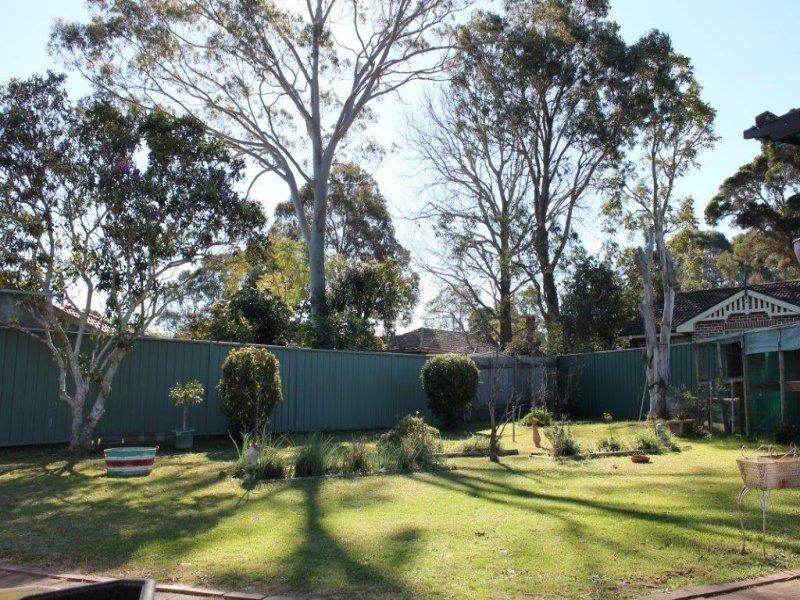 16 Treatt Ave, Padstow, NSW 2211