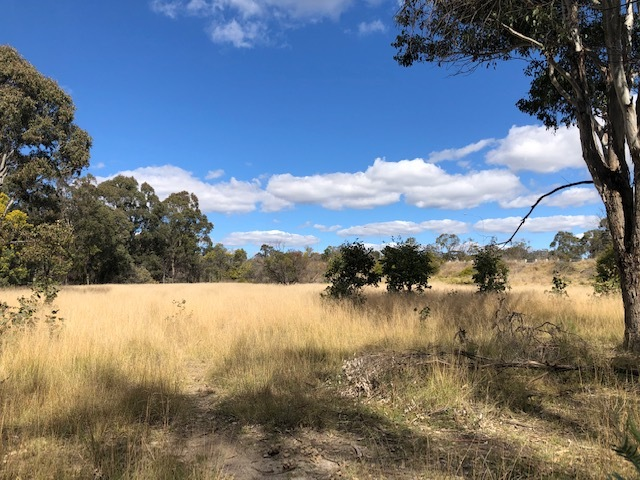 Lot 1 New England Highway, Dalveen, Qld 4374