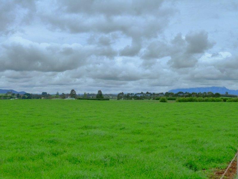 349 Lower Barrington Road, Lower Barrington, Tas 7306