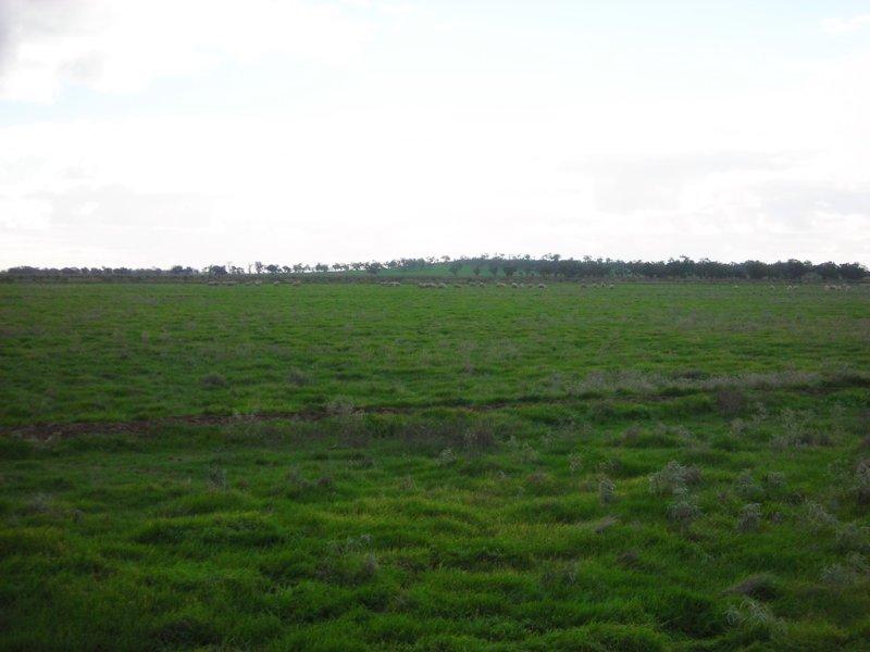 1307 Kooba Road, Whitton, NSW 2705