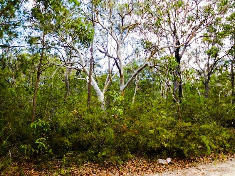 538 Bushells Ridge Road, Wyee, NSW 2259