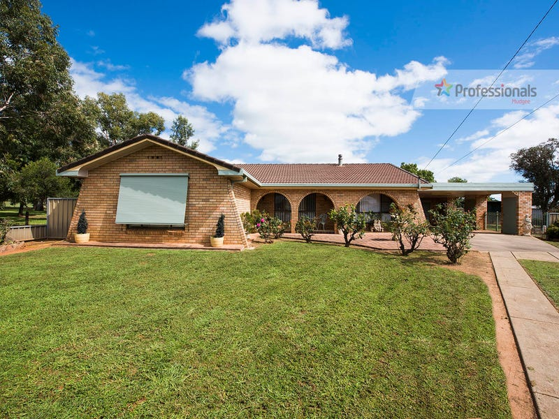 12 Scott Avenue, Gulgong, NSW 2852
