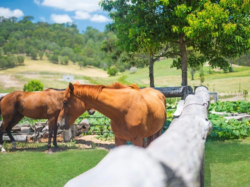 Acreage 2 Montego Hills, Kingsholme, Qld 4208