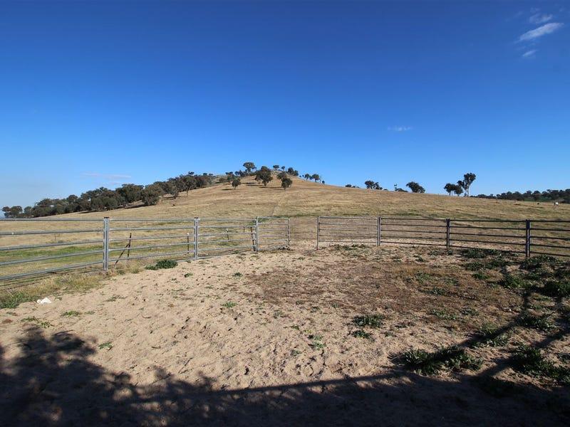 765 Stockinbingal Road, Cootamundra, NSW 2590