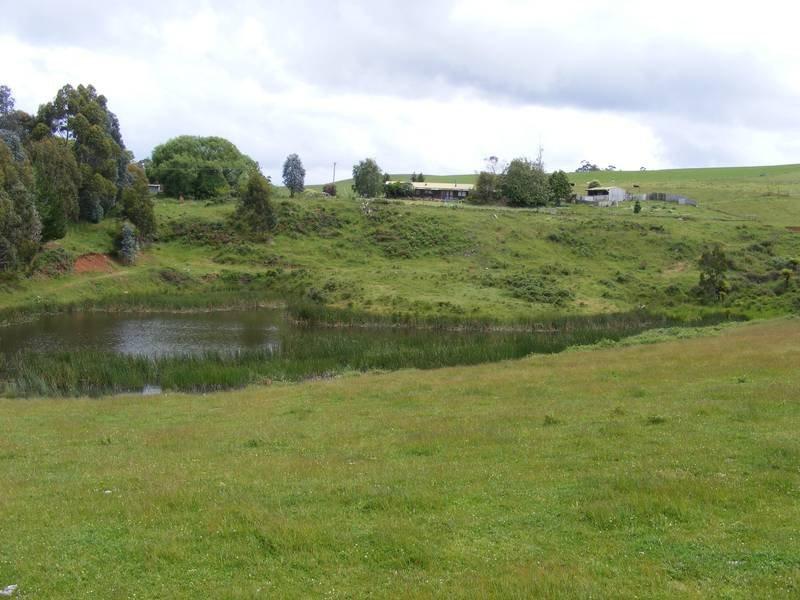 33 Poimena Road, Mooreville, Tas 7321