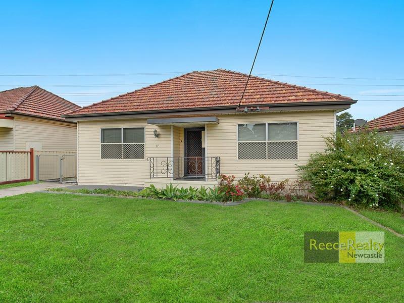 17 Wilkinson Avenue, Birmingham Gardens, NSW 2287
