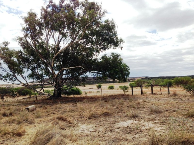 Lot 125 Urch Road, Narra Tarra, WA 6532