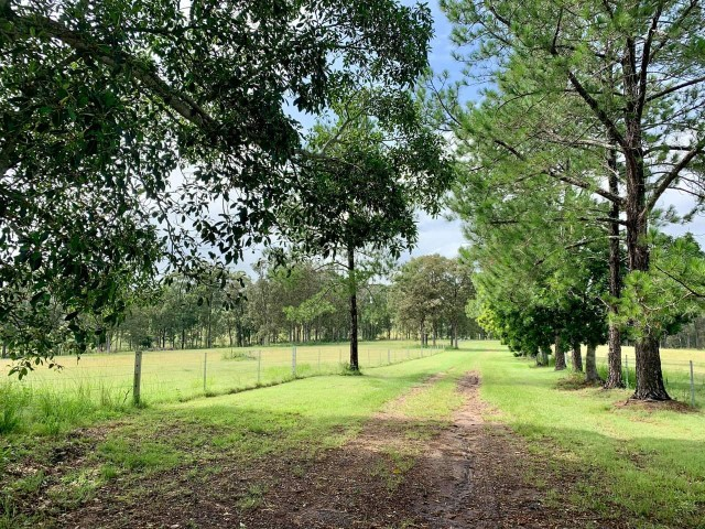 495 Reynolds Road, Kyogle, NSW 2474
