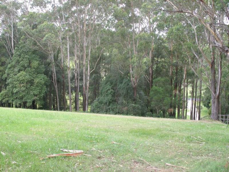 Lot 3, Picketts Valley Road, Picketts Valley, NSW 2251