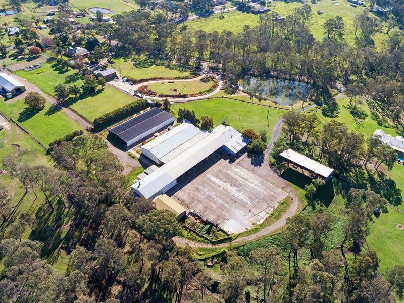 24 Reedy Road, Cattai, NSW 2756