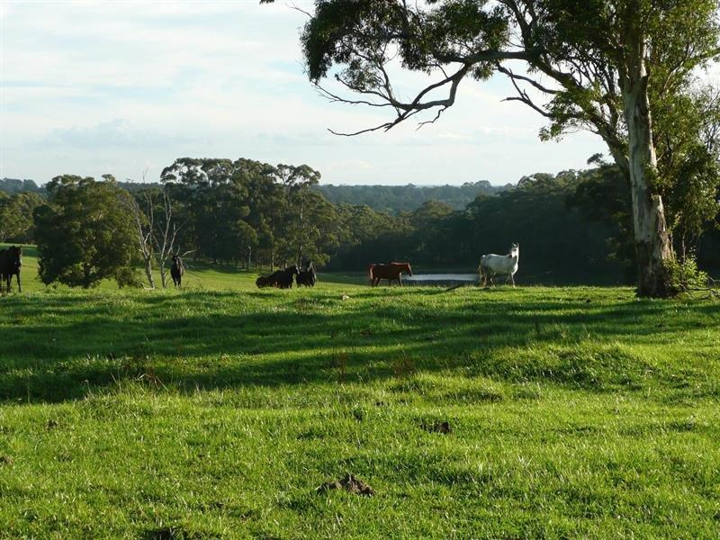 7 Ringwood  Lane, Exeter, NSW 2579
