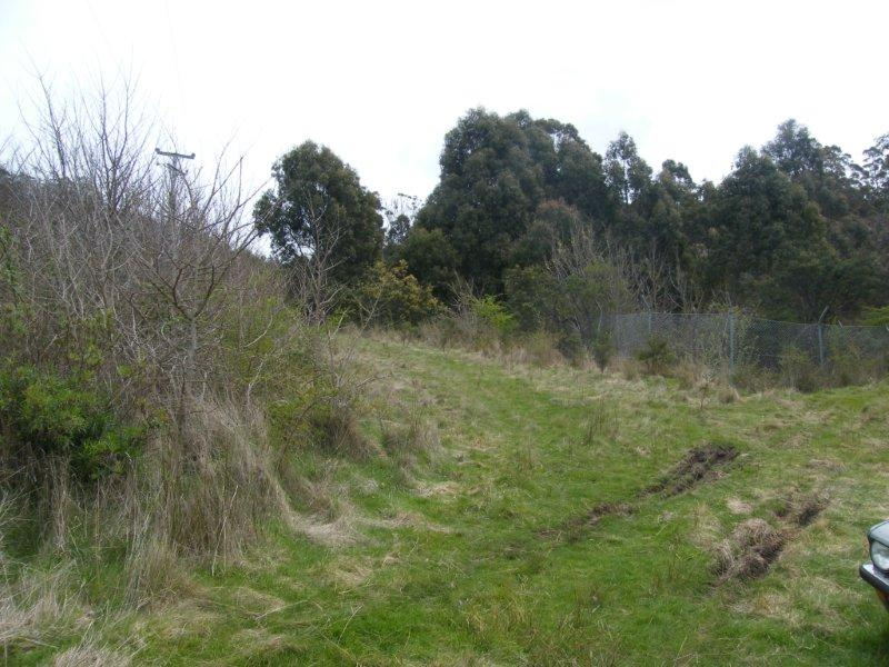 Lot 1 Woolridge Road, Rhyndaston, Tas 7120