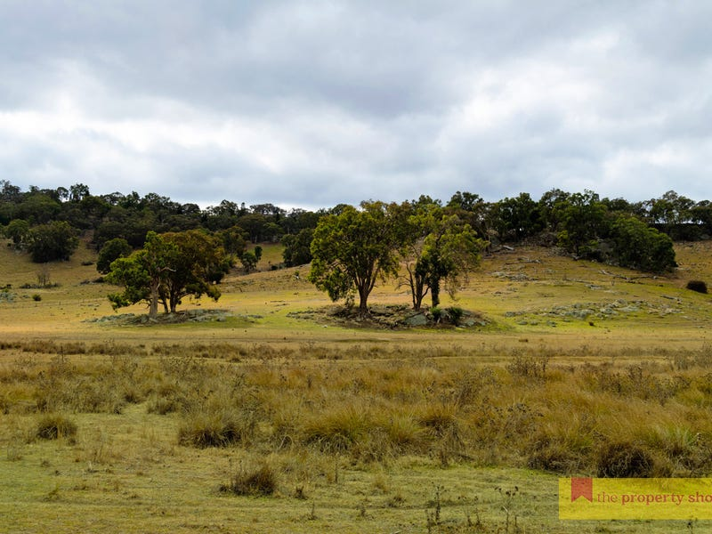 404 Bara Lue Road, Lue, NSW 2850