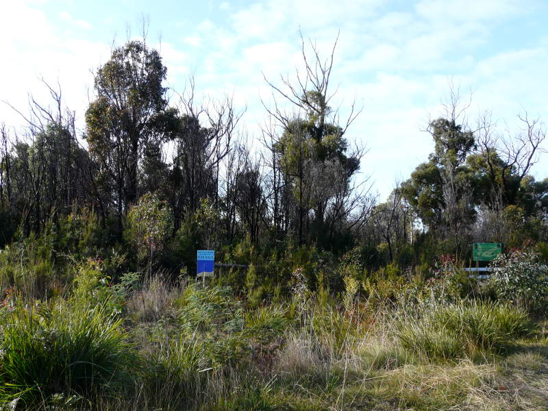 Lot 14, Lot 14 Tasman Highway, Scamander, Tas 7215