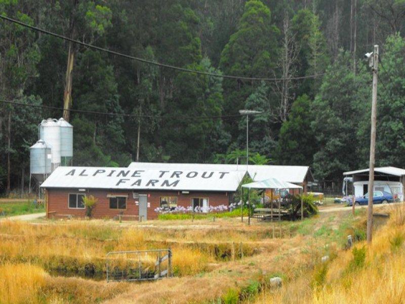 115 MT BAW BAW TOURIST ROAD, Noojee, Vic 3833