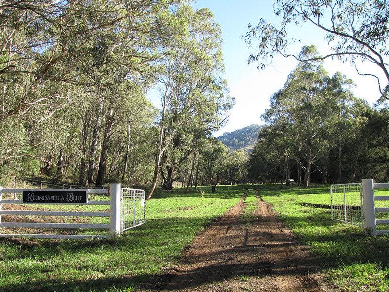 Brindabella Blue Crawny Road, Nundle, NSW 2340