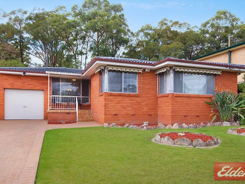 31 Hurley Street, Toongabbie, NSW 2146