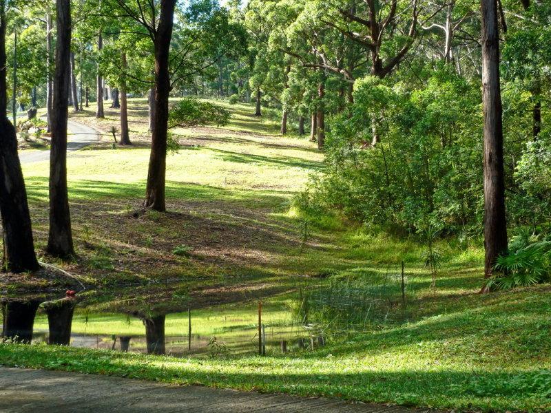 Lot 105, Rosella Place, Arakoon, NSW 2431