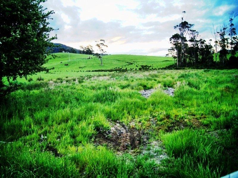 1535 Pipers River Road, Karoola, Tas 7267