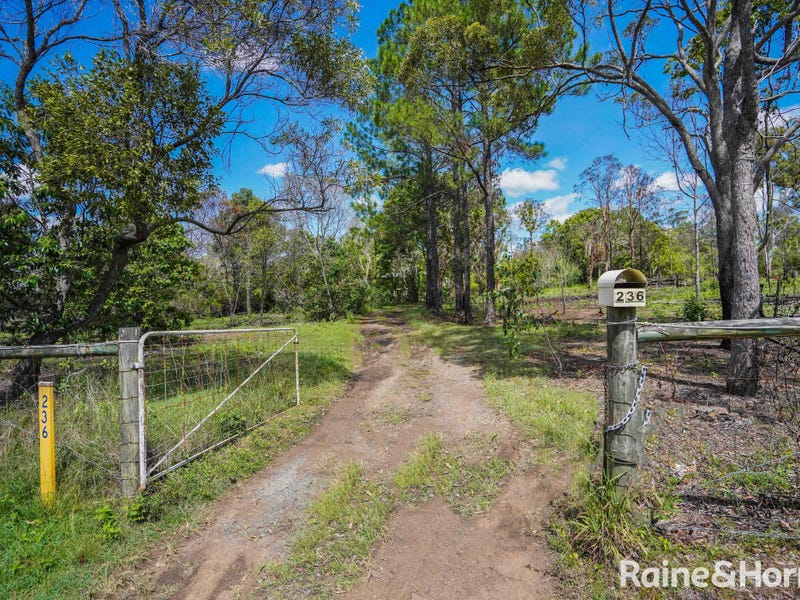 236 Condor Drive, Sunshine Acres, Qld 4655