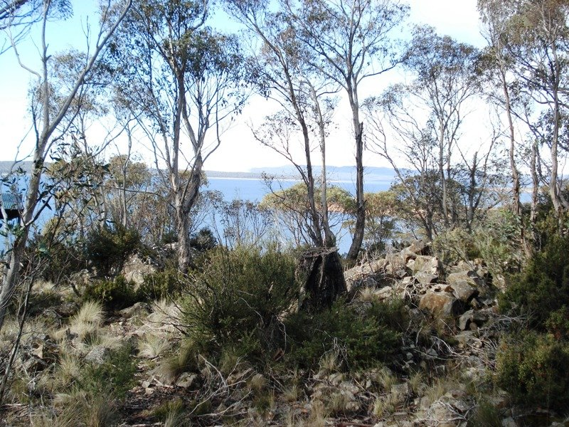 Lot 2, 2 Seals Road, Brandum, Tas 7304