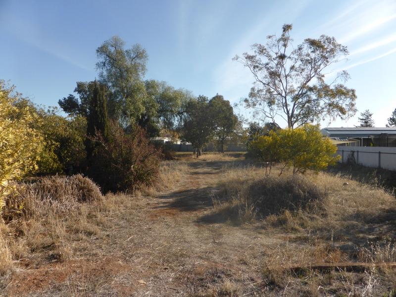 50 Boori Street, Peak Hill, NSW 2869