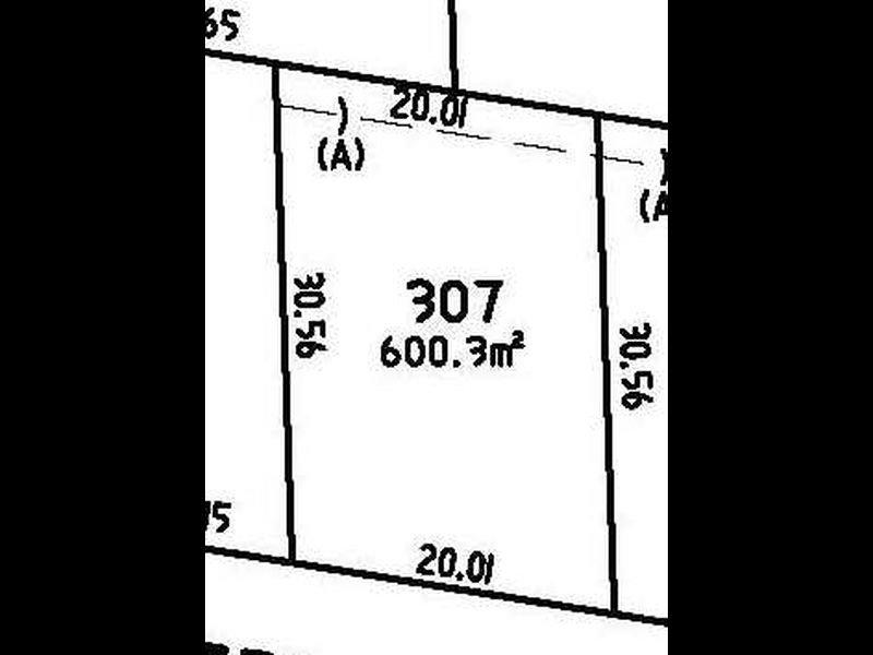 Lot 307 Floribunda Street, Floraville, NSW 2280