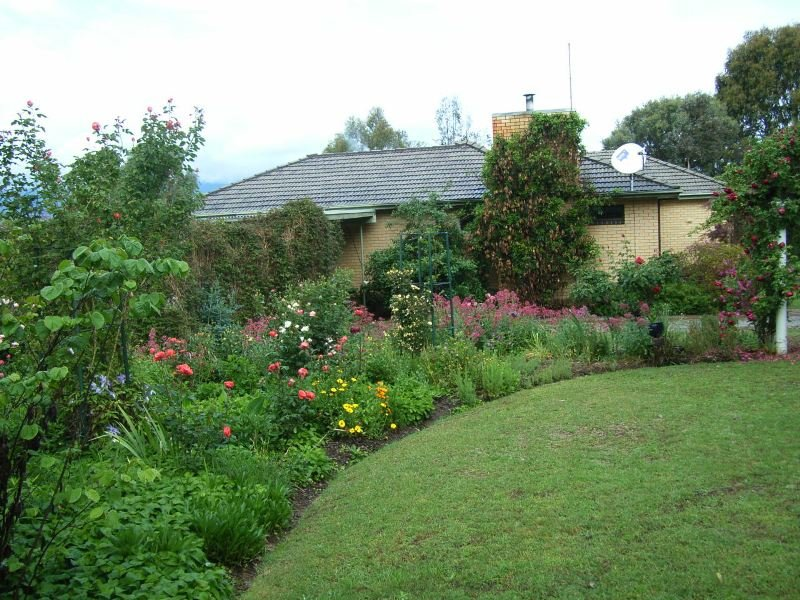 1377 Dederang-Yackandandah Road, Dederang, Vic 3691