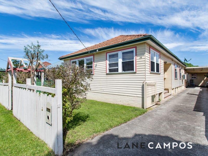 14 Collins Street, Georgetown, NSW 2298