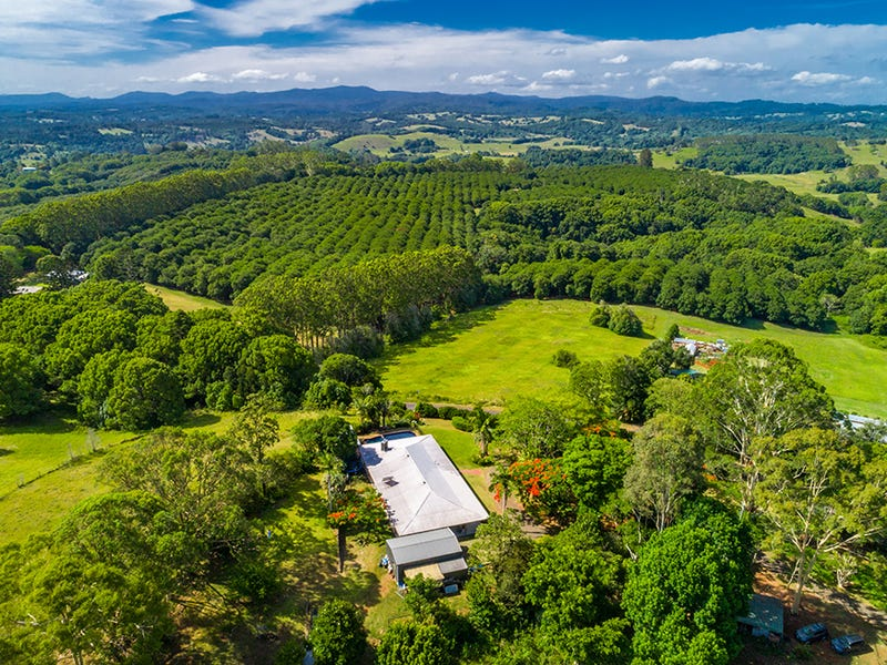 65 James Gibson Road, Clunes, NSW 2480
