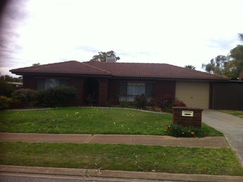 49 Lomalinda Drive, Craigmore, SA 5114