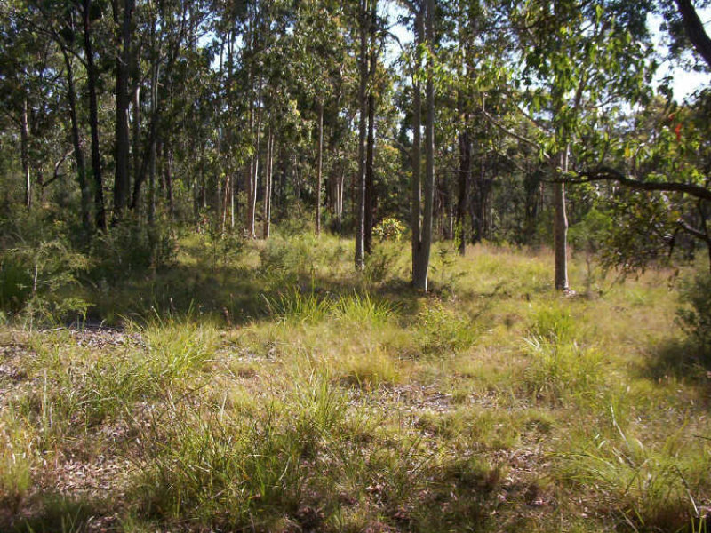 125 Bundabah Road, Pindimar, NSW 2324