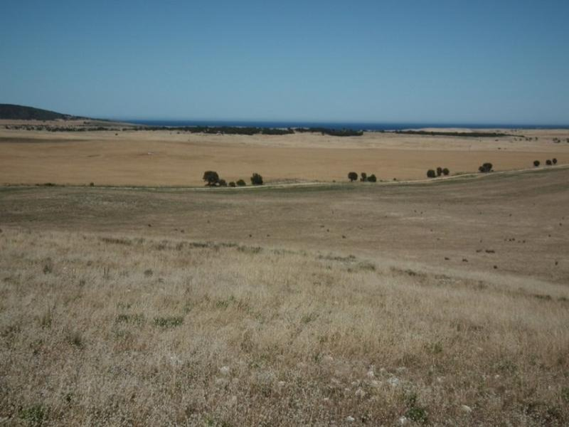 Section 199/ Hundred of WARROW, Coulta, SA 5607