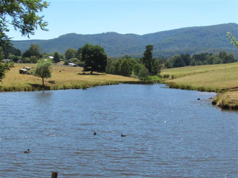 Lot 1, 1600 Mt Baw Baw Tourist Rd (Near Noojee), Icy Creek, Vic 3833