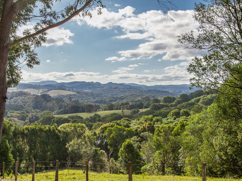 315 Coorabell, Coorabell, NSW 2479