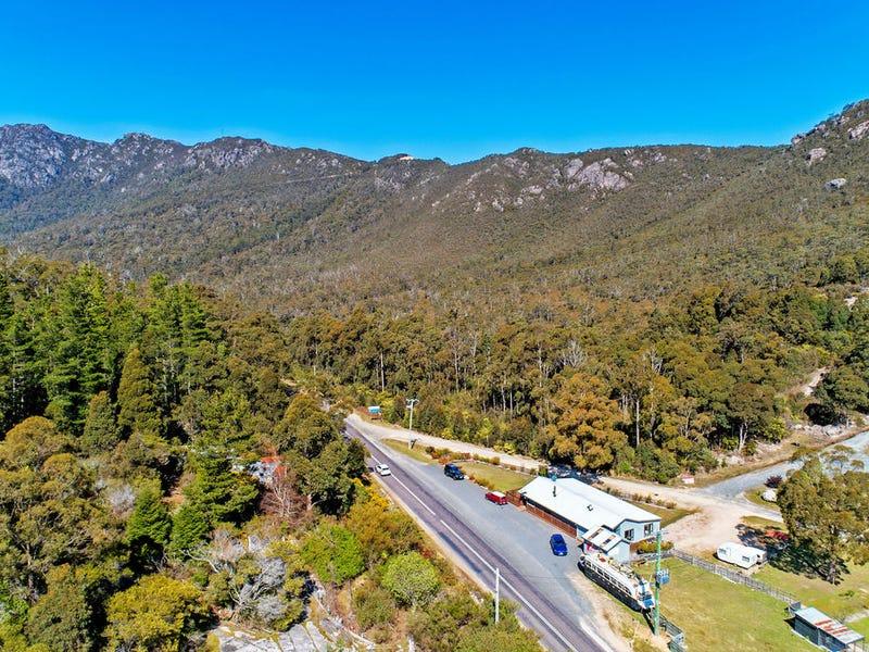 203 Cethana Road, Cethana, Tas 7306
