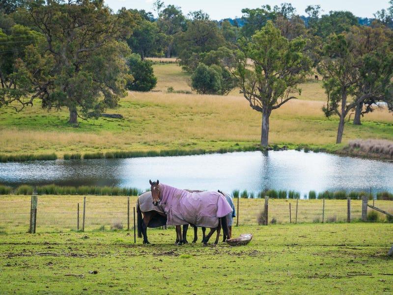 416 Wyndham Lane, Kanoona, NSW 2550