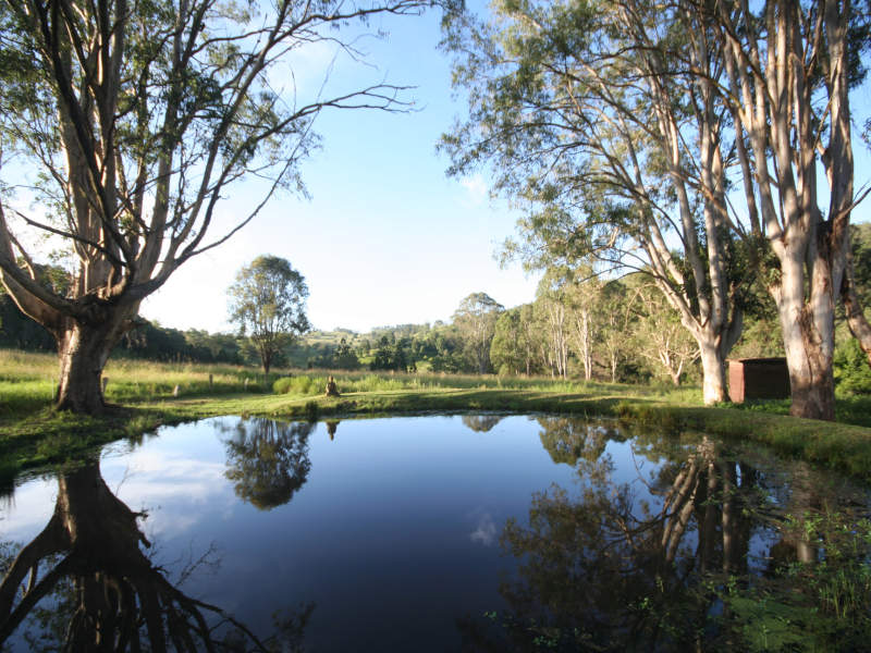 Address available on request, Rock Valley, NSW 2480