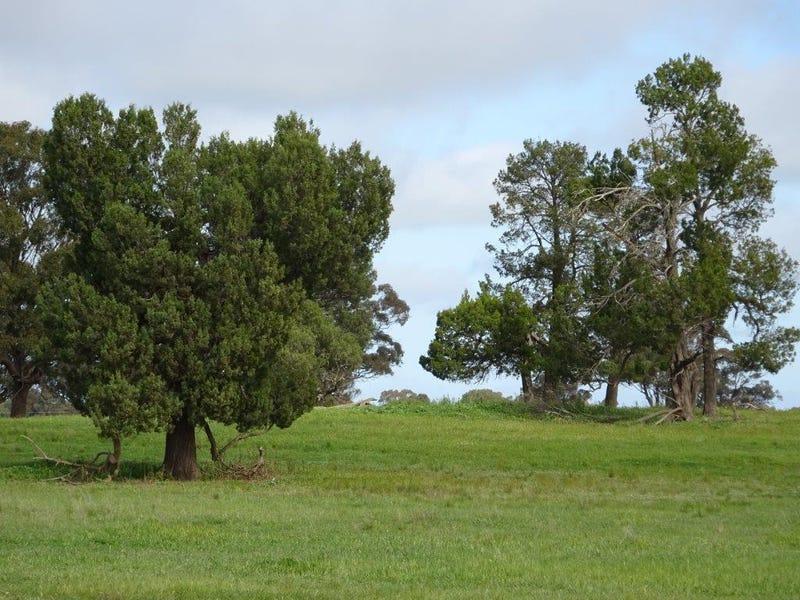 ... 24 LANE, Moama, NSW 2731
