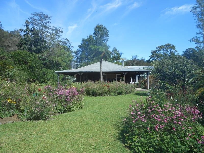 North Arm Road,, Girralong, NSW 2449