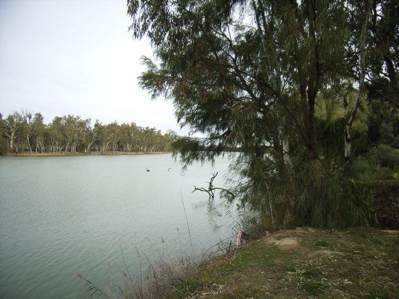1588 Murray Road, Curlwaa, NSW 2648