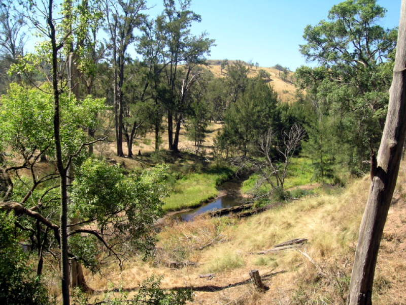 792 Peach Tree Road, Megalong Valley, NSW 2785