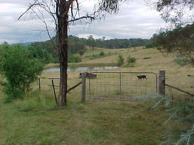 1020 Putty Valley Road, Putty, NSW 2330