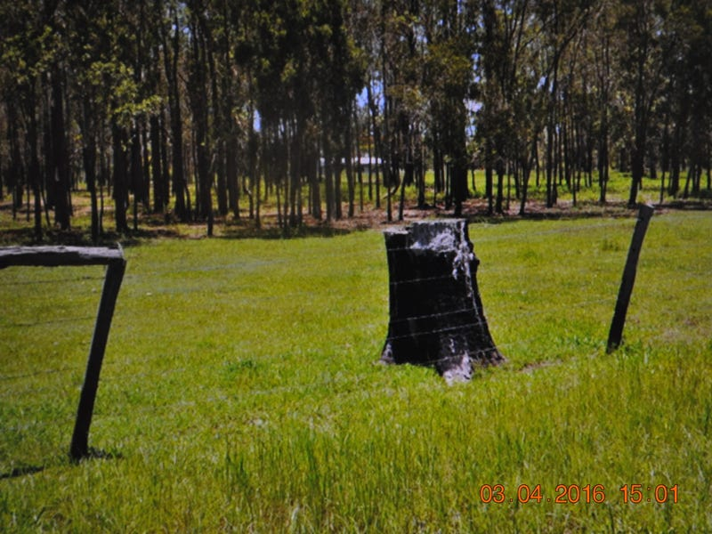 Address available on request, Mount Tom, Qld 4677